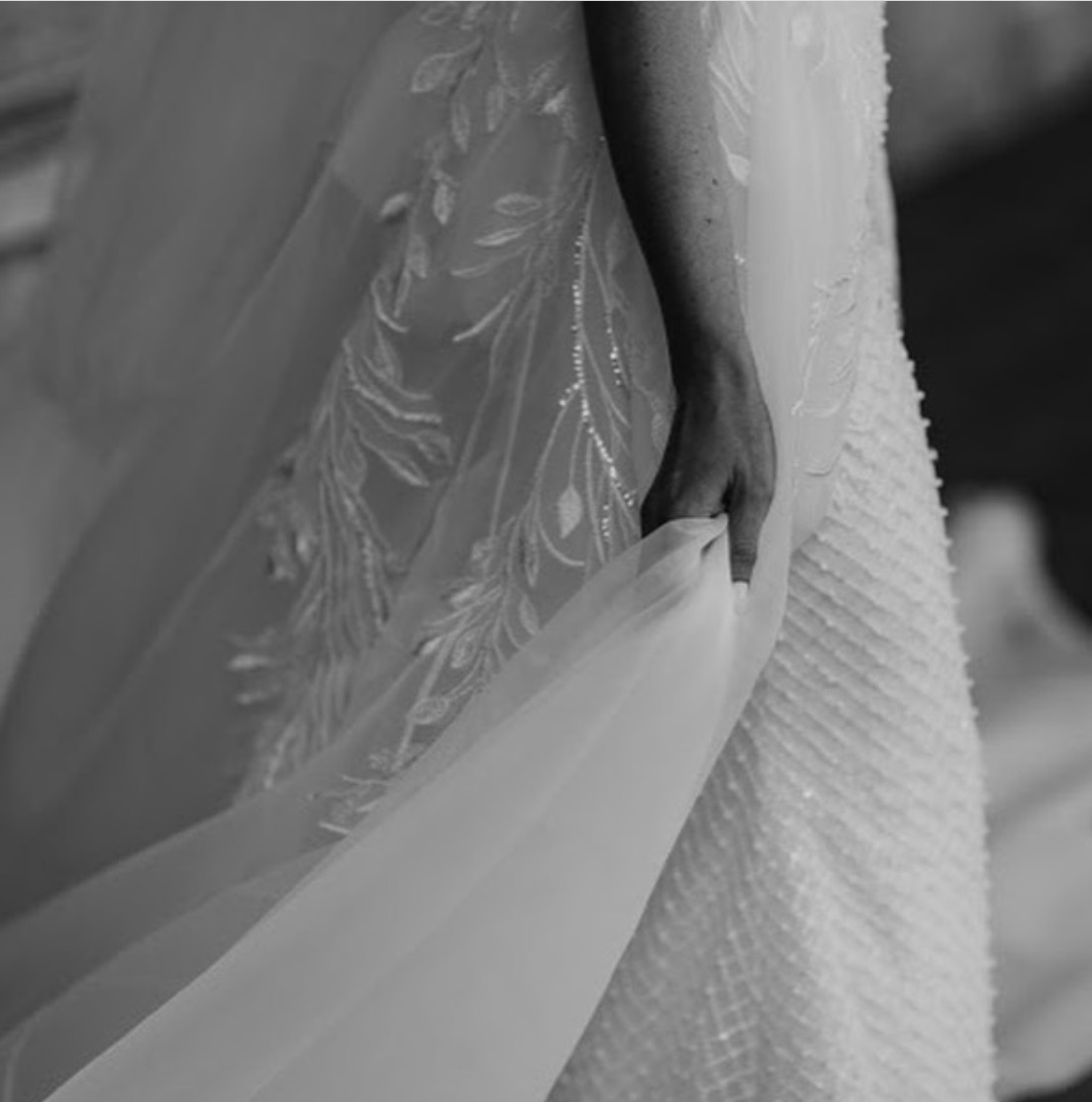 Ivory Embroidered Lace: Horatio